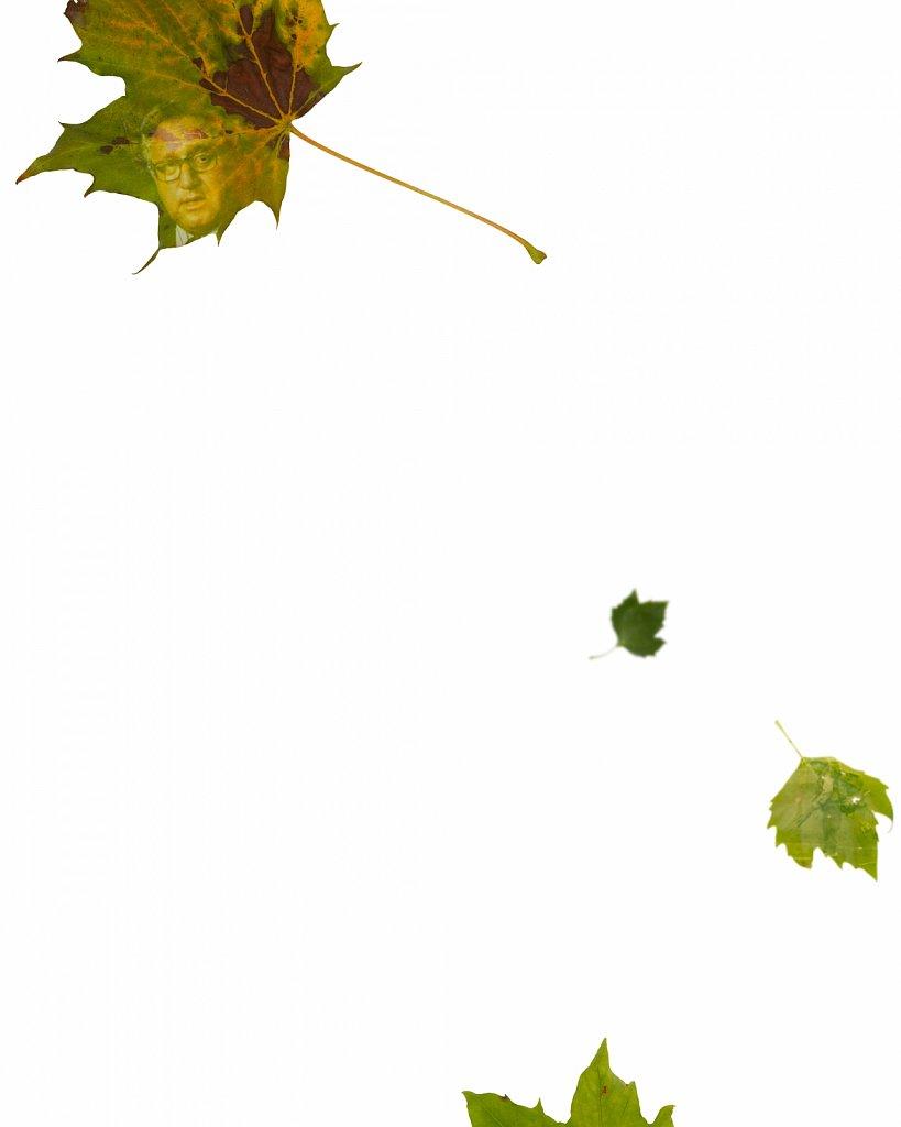 Human Leaves A