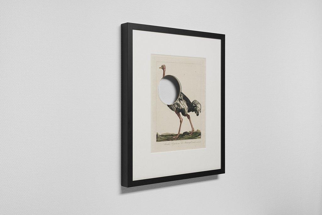 Logical Deletion (Ostrich)